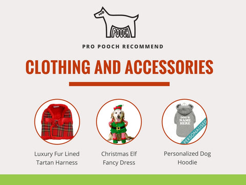 pro pooch recommended clothing and accessories, tartan vest, elf dress and personalised dog xmas hoody