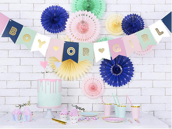 Boy or Girl Flag Banner  Garland Party Deco - Hello Party