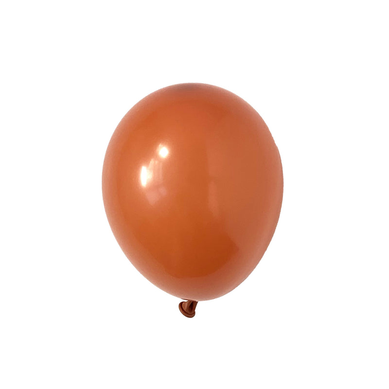 Burnt Orange Party Balloons | Biodegradable | Modern & Stylish Party Supplies