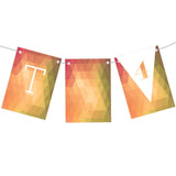 Tidy Triangles Bunting