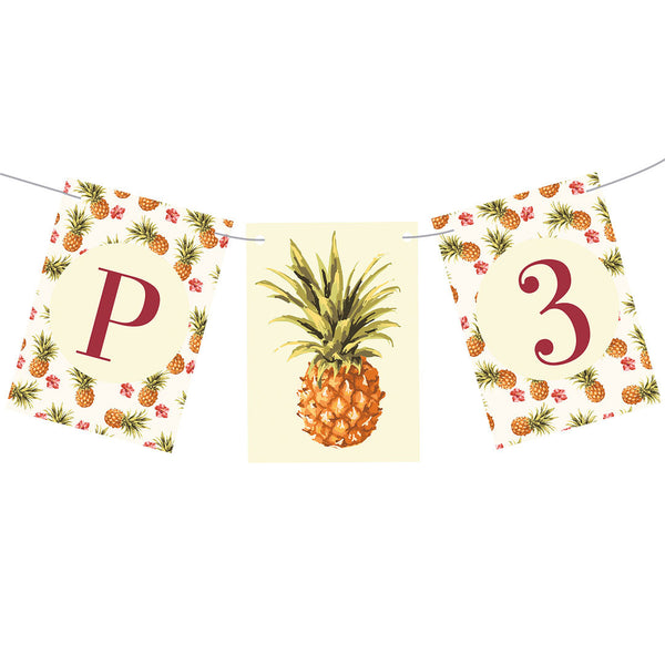 Birthday Pineapples! Bunting  Personalisable Bunting Hello Party - All you need to make your party perfect!  - Hello Party