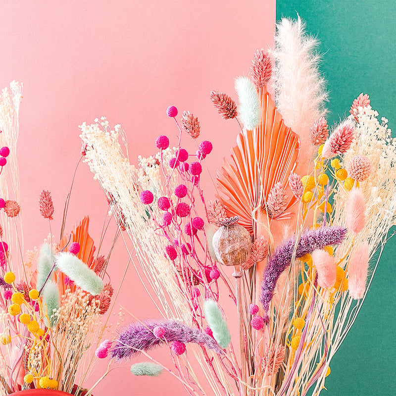 A Happy Bunch - Sherbet Rainbow Dried Flowers | Baked Blooms details