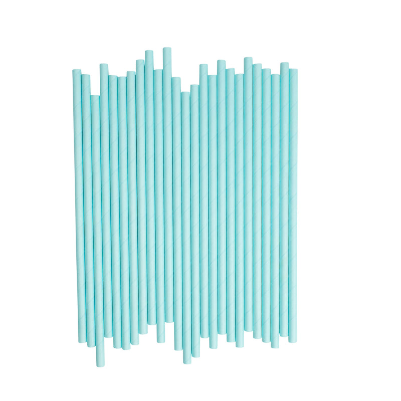 Plain Light Blue Paper Straws  Paper Straws Hello Party Essentials - Hello Party