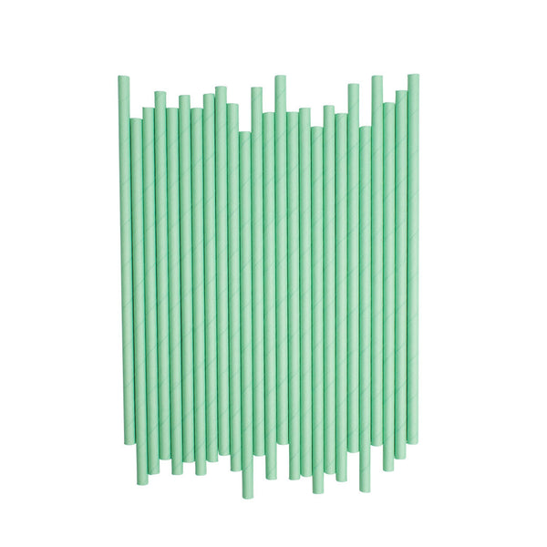 Plain Mint Paper Straws  Paper Straws Hello Party Essentials - Hello Party