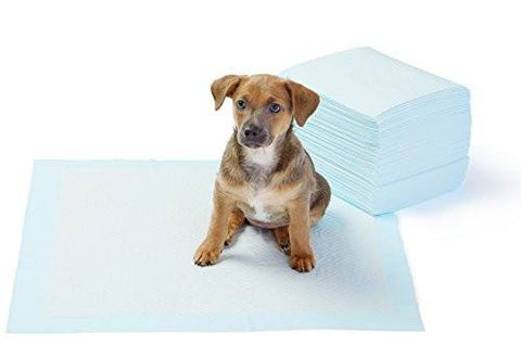 Puppy Potty Training Pads - Pet's Finest