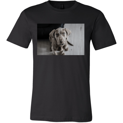 Weimaraner T Shirt - Pet's Finest