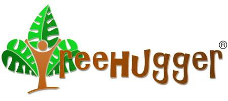 Treehugger World