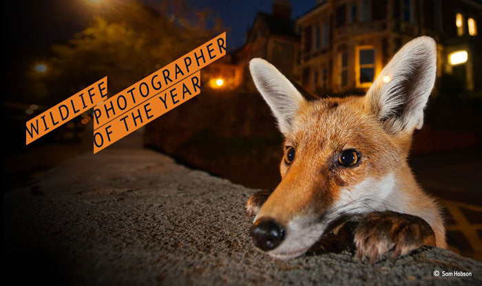 Wildlife Photographer of the Year London