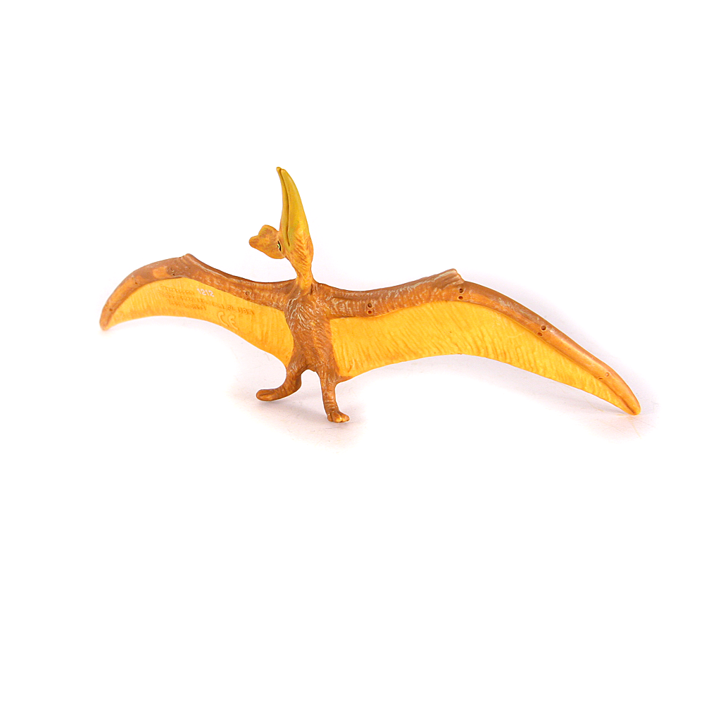 Pteranodon - Little Whale
