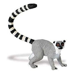 Ring-tailed Lemur - Little Whale