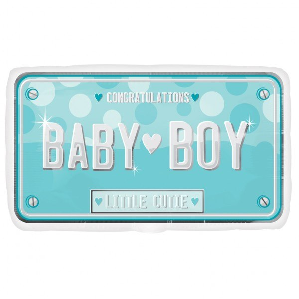Baby Boy License - Little Whale