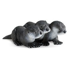 North American River Otter Babies - Little Whale