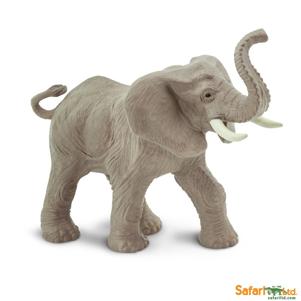 African Elephant M - Little Whale