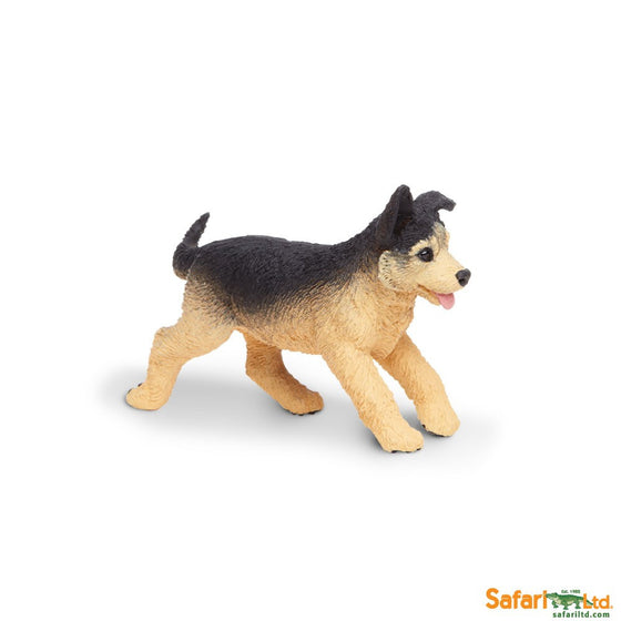 German Shepherd Puppy Running - Little Whale