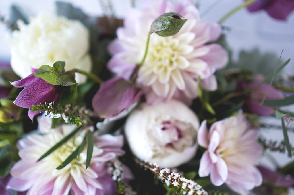 Fresh Flowers: Lavish Lavender