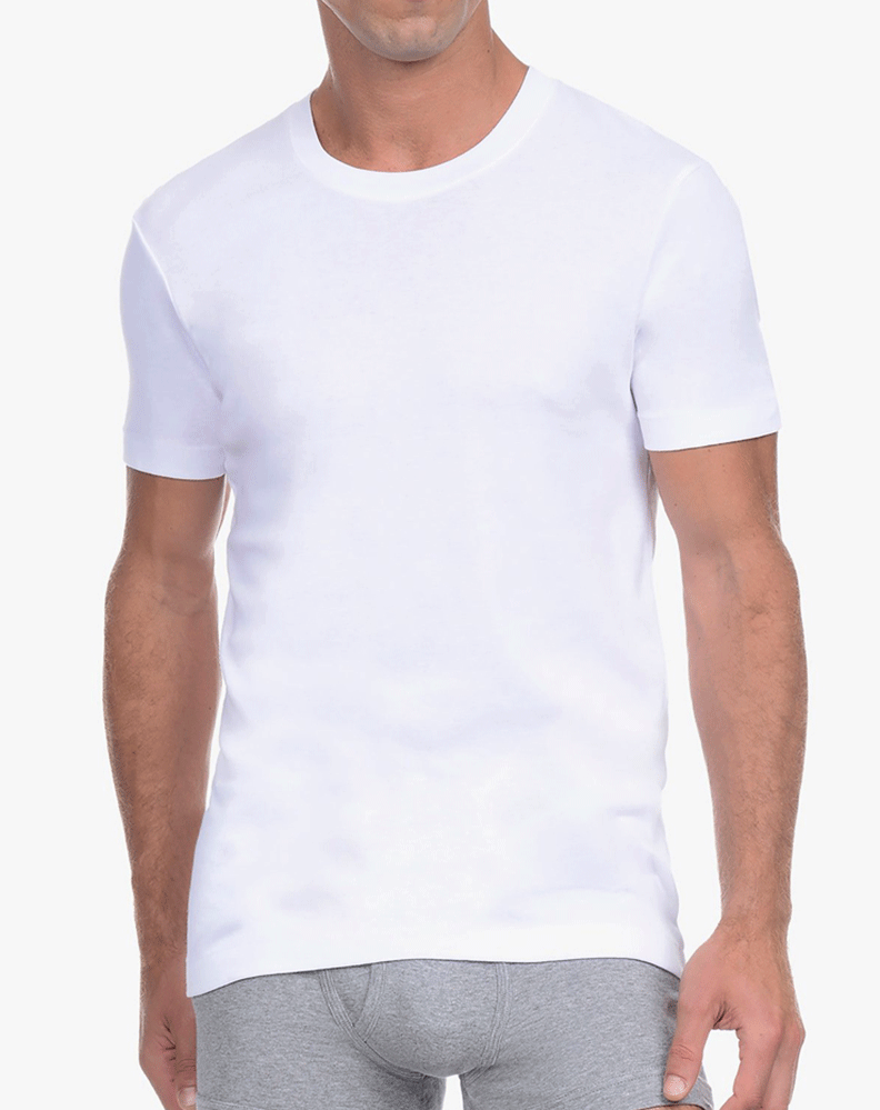 2(X)IST 3104100501 Pima Cotton Crew Neck T-shirt 10001-white