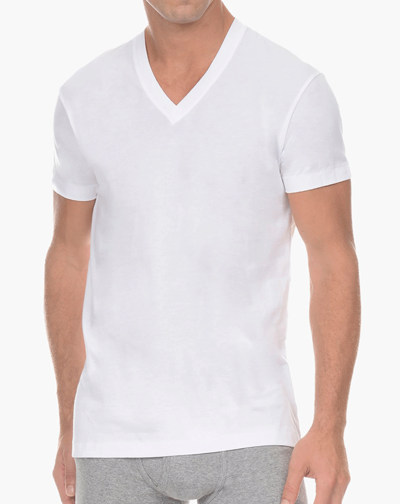 2(X)IST 3104101001 Pima Cotton V-neck T-shirt 10001-white