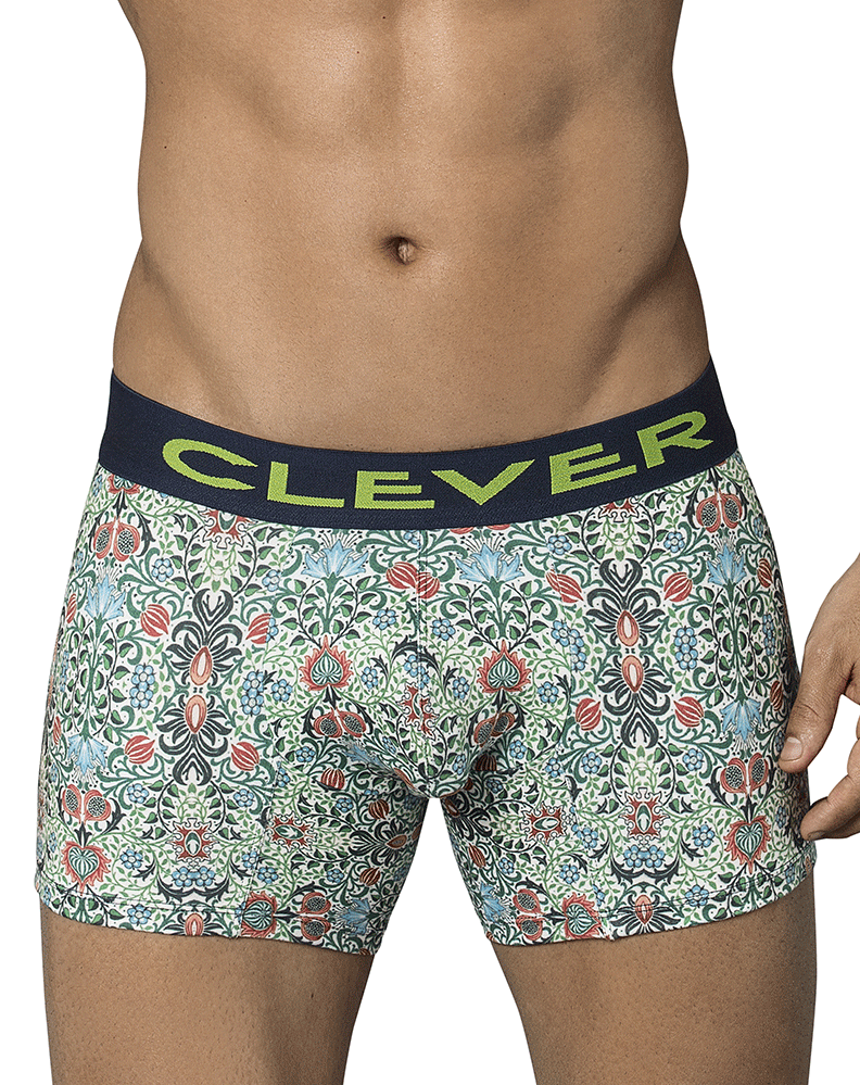 Clever 2344 Ivy Boxer Briefs Green