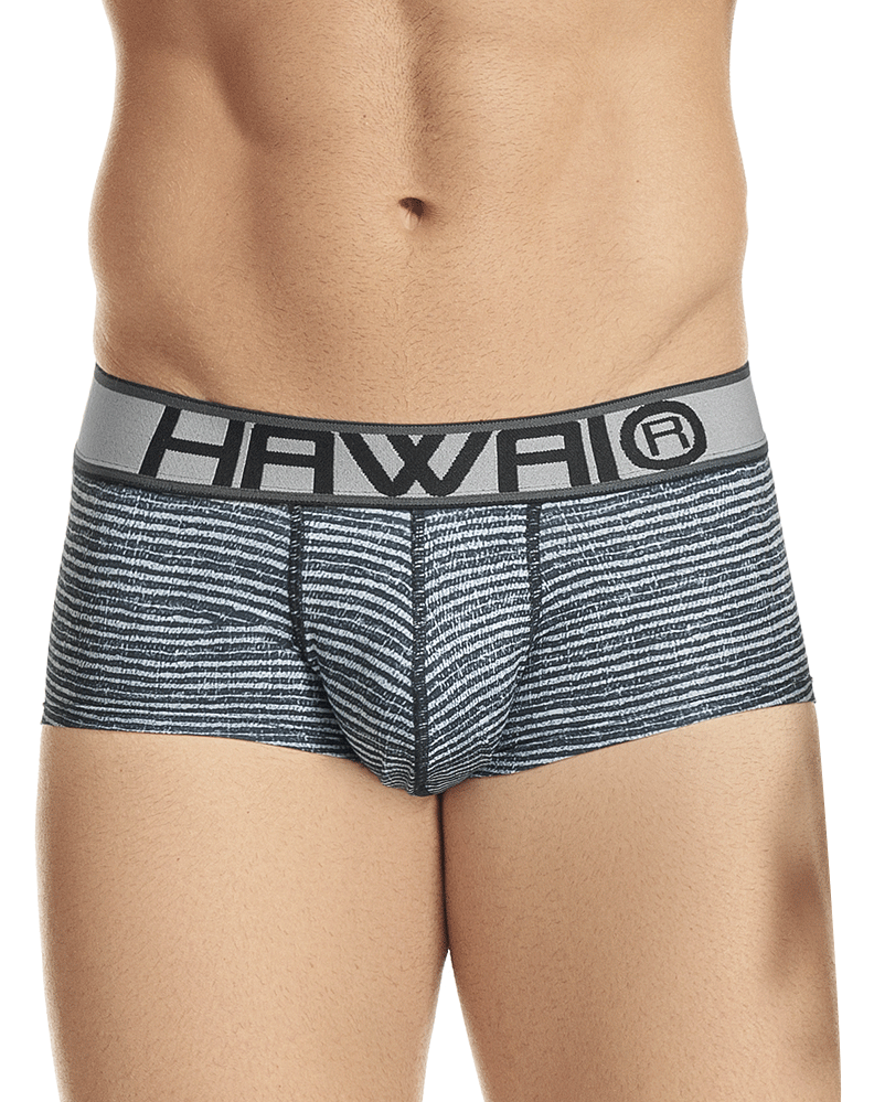 Hawai 41975 Briefs Gray