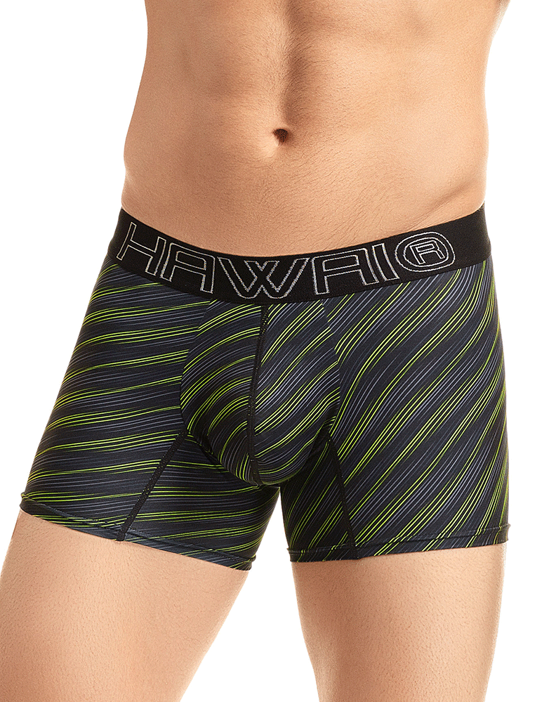 Hawai 41921 Boxer Briefs Green
