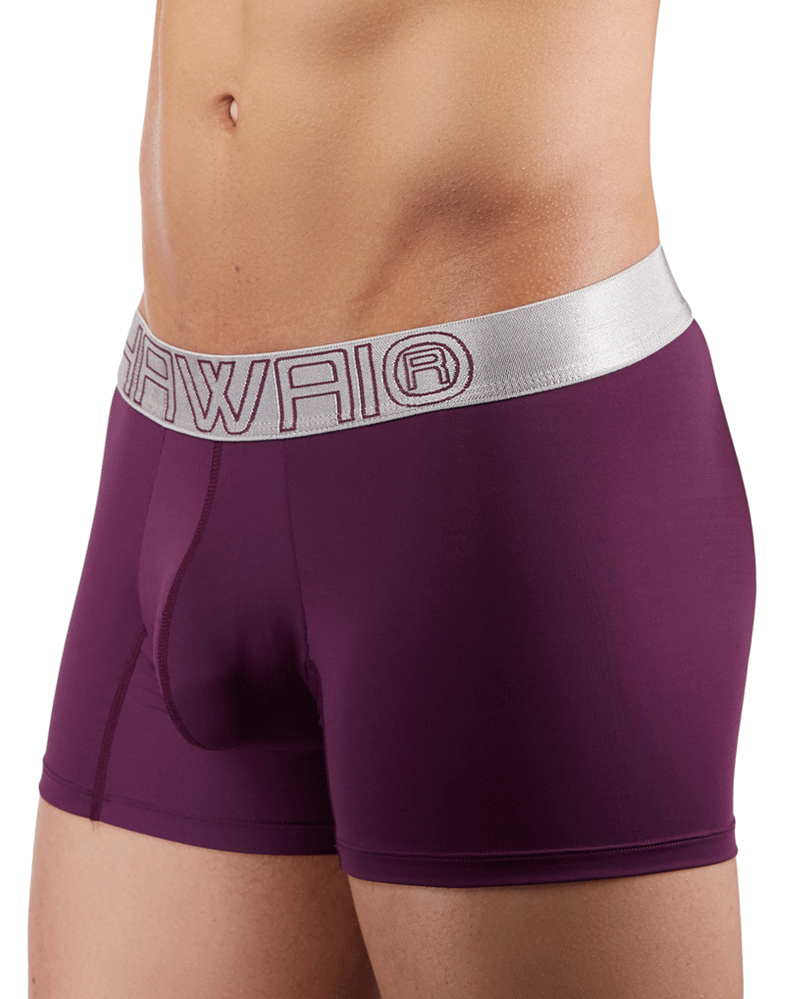Hawai 41948 Boxer Briefs  Grape