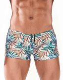 MALE BASICS OC01 Swim Trunk Topics - Steveneven.com