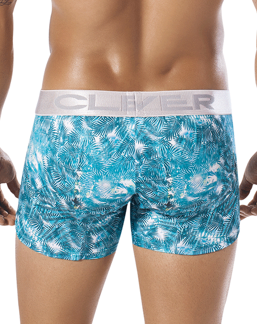 CLEVER 2257 Wheat Spikes Boxer Green - Steveneven.com