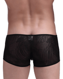 PETITQ 161010 Savana Boxer Briefs Black - Steveneven.com