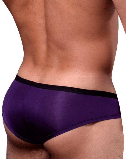 Doreanse 1377 Boost Cheeky Brief Microfiber Purple