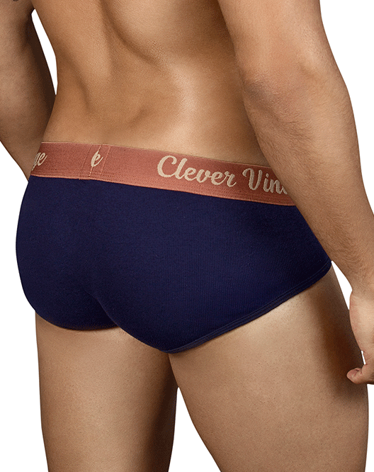 CLEVER 5316 Old School Open Fly Briefs Blue - Steveneven.com