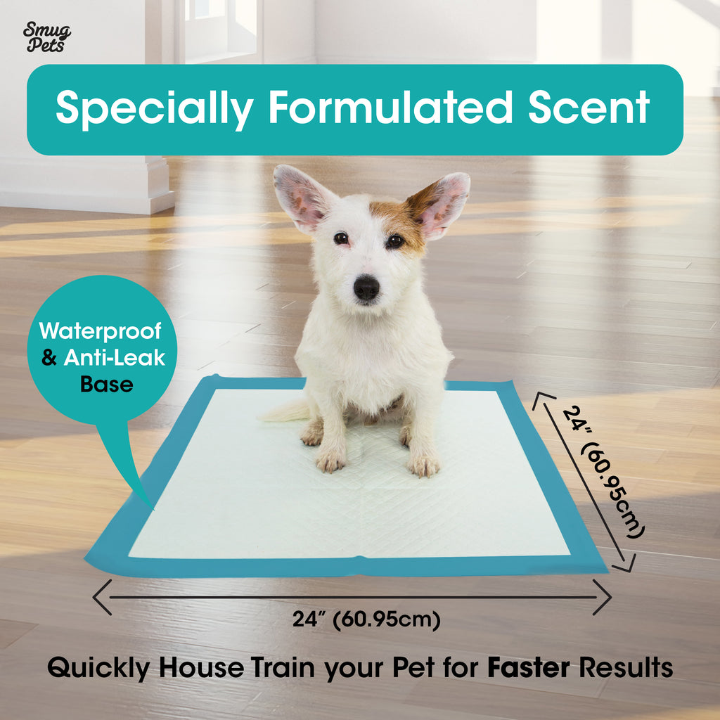 SmugPets 100 Premium Puppy Dog Training Pads - 6 Layers with Poly Lock Core Plus Attractant - Super Absorbent - Odour Elimination