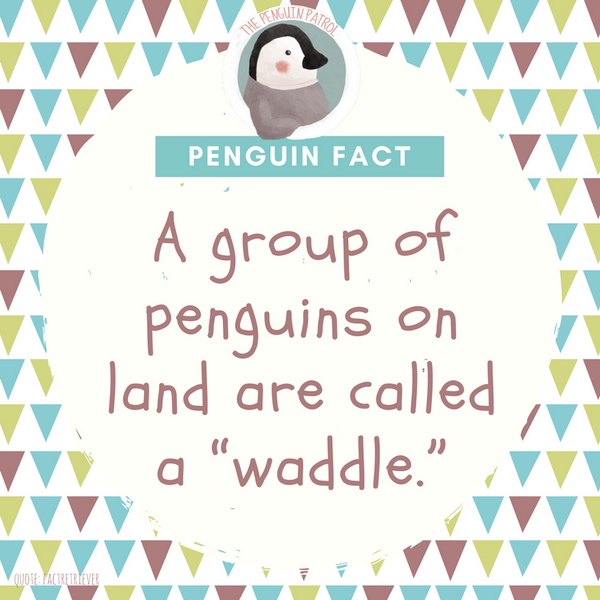 Penguin Fact - Waddle