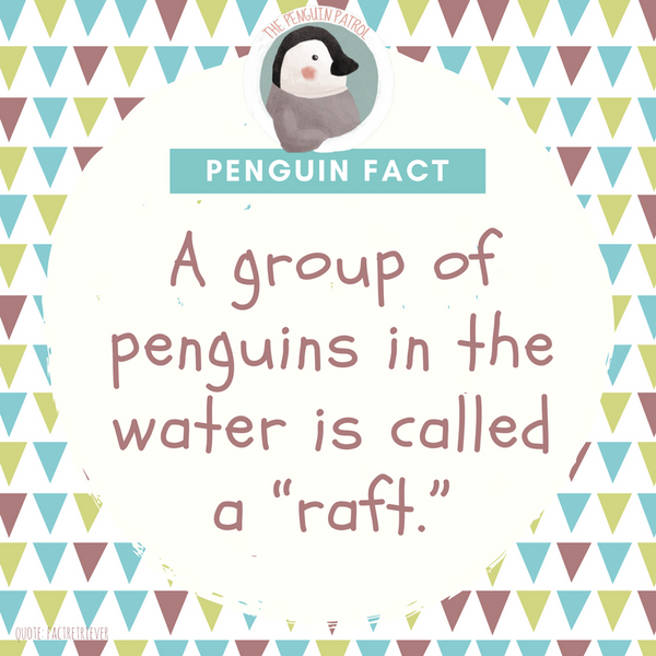 Penguin Fact - Raft