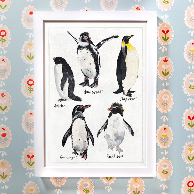 Types of Penguin Print A3 A4 Art Print by Abby Cook Illustration