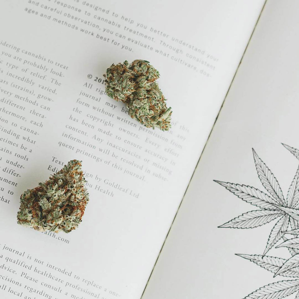 Goldleaf Cannabis Collection - Expert Journals and Artwork