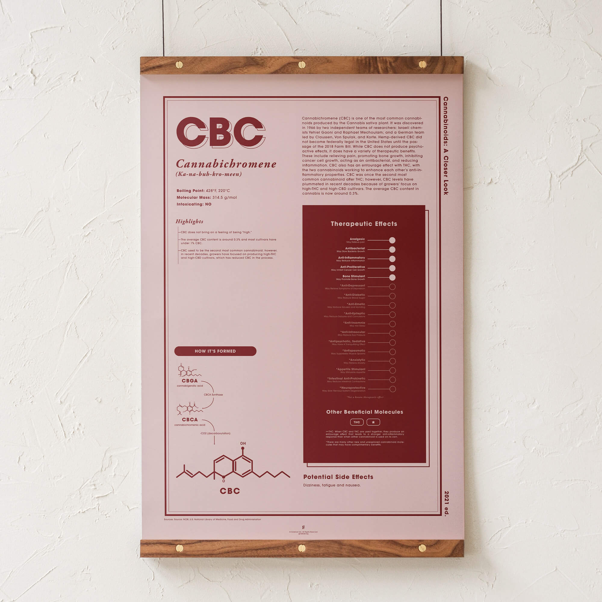 CBC: A Closer Look Infographic Art Print by Goldleaf
