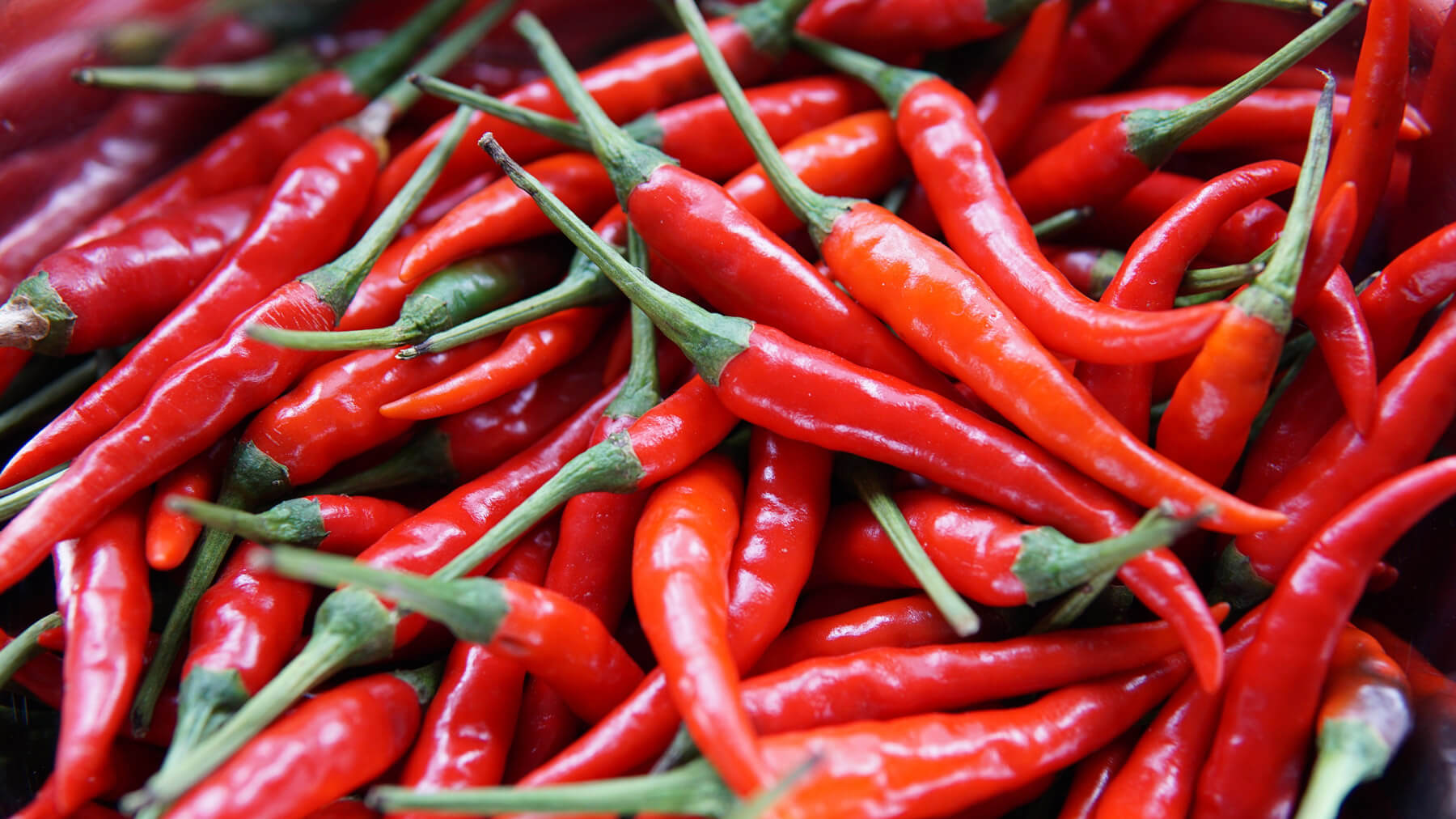 Capsaicin for suppressing muscle spasms - Goldleaf