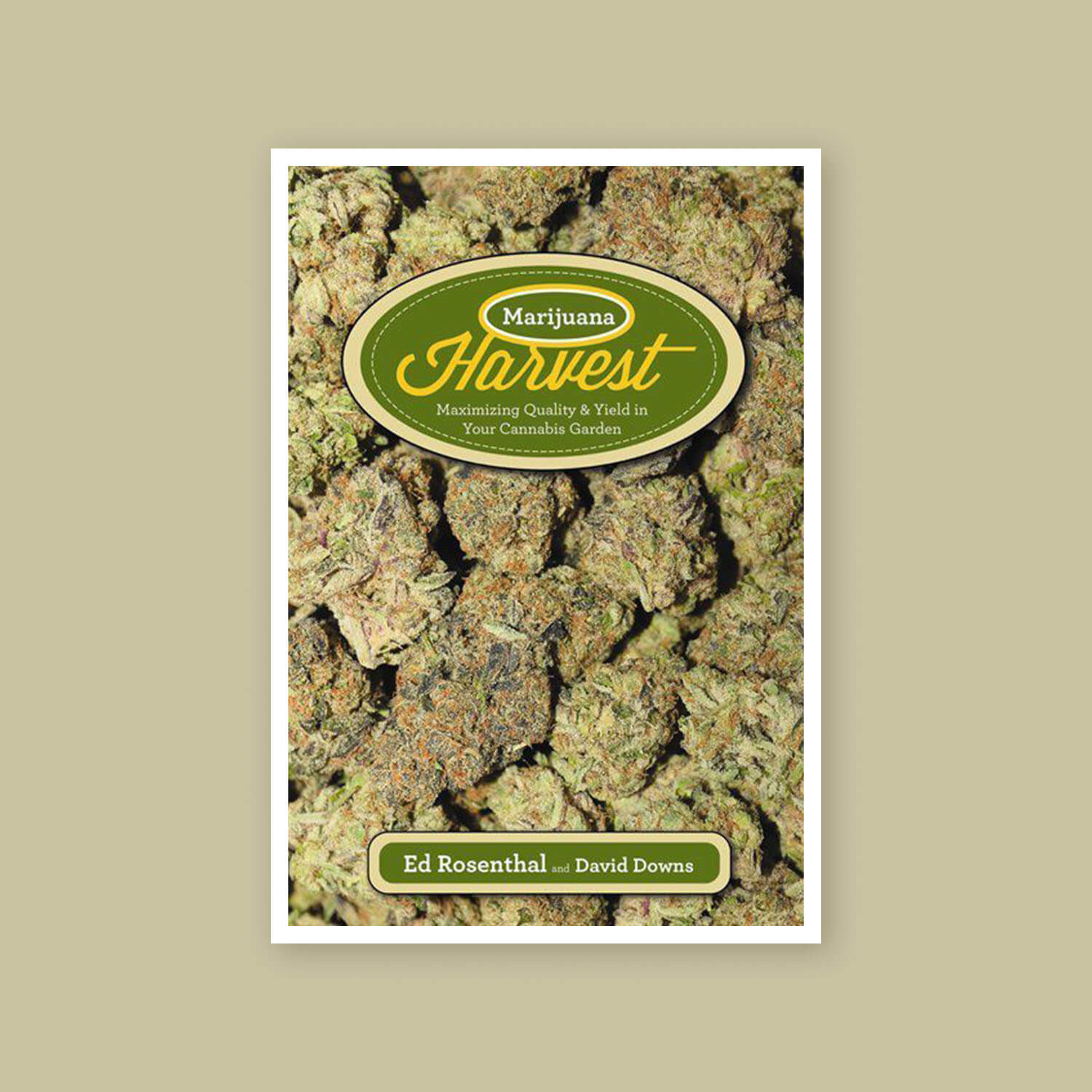 Marijuana harvest - Goldleaf bookshelf