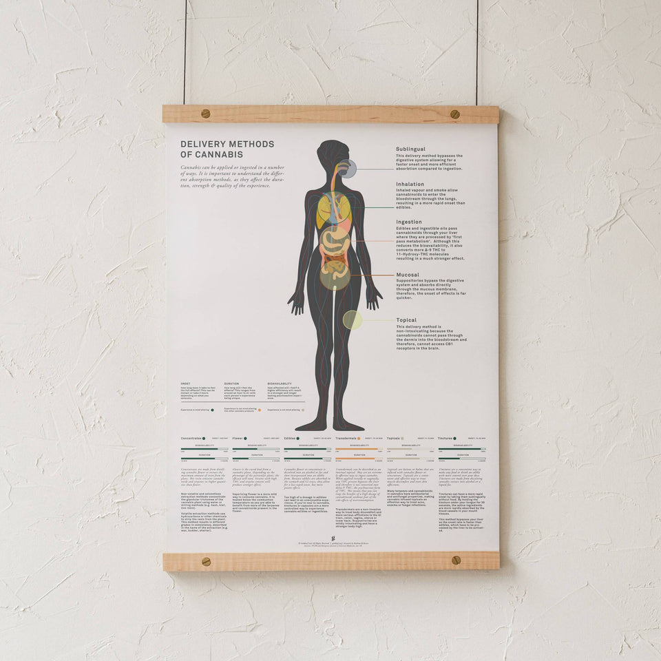 Delivery Methods of Cannabis Infographic Art Print - Goldleaf