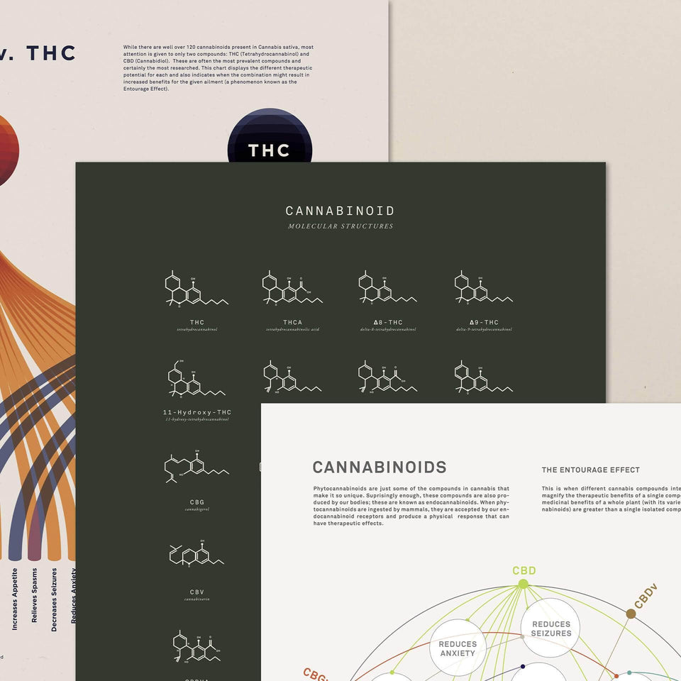 Cannabinoids Bundle by Goldleaf - Our Best Infographic Prints
