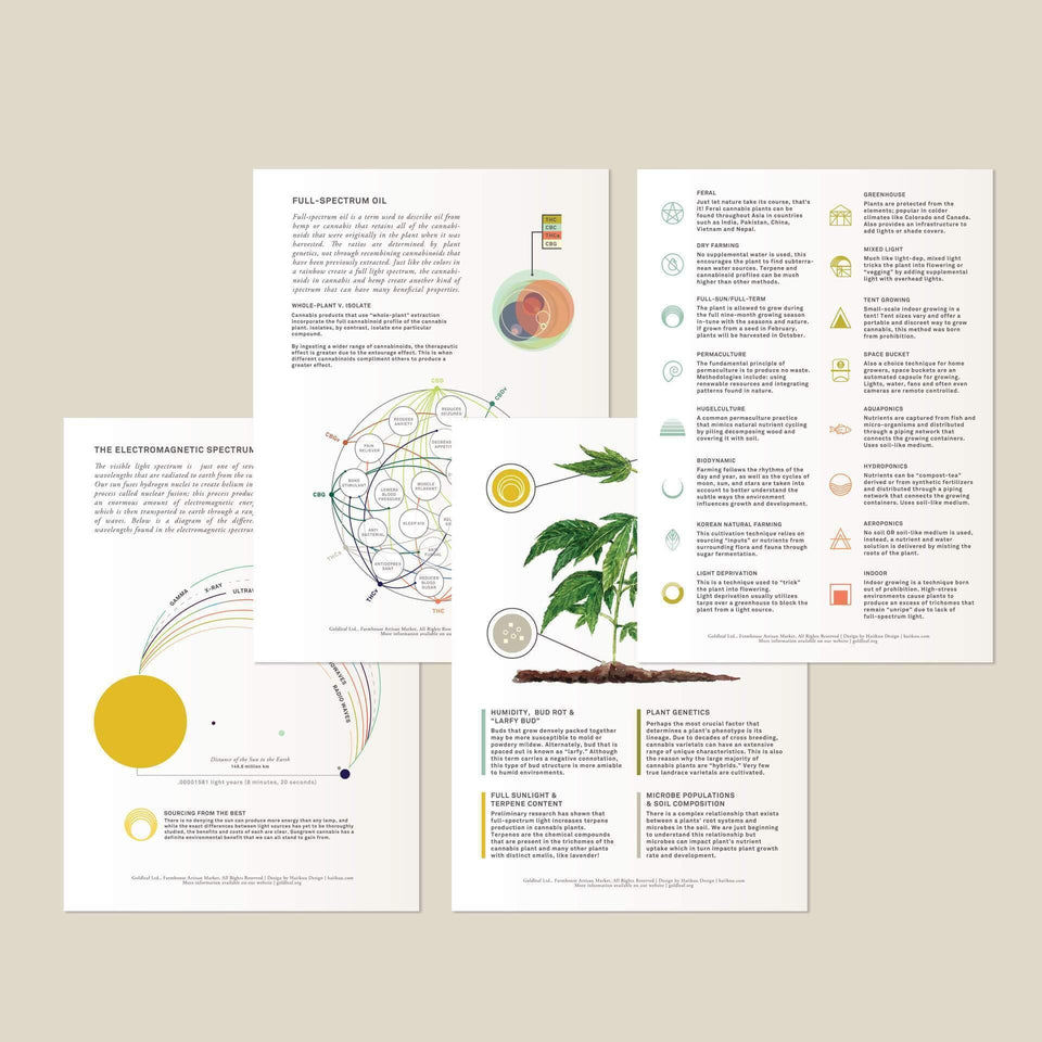 Cannabis Quality Reference Cards - Cannabis Education - Marijuana Gift - Goldleaf
