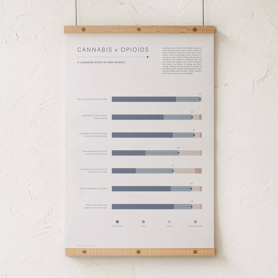 Cannabis v Opioid Infographic Print - Pain Study Results Visualized - Medical Cannabis Information - Goldleaf