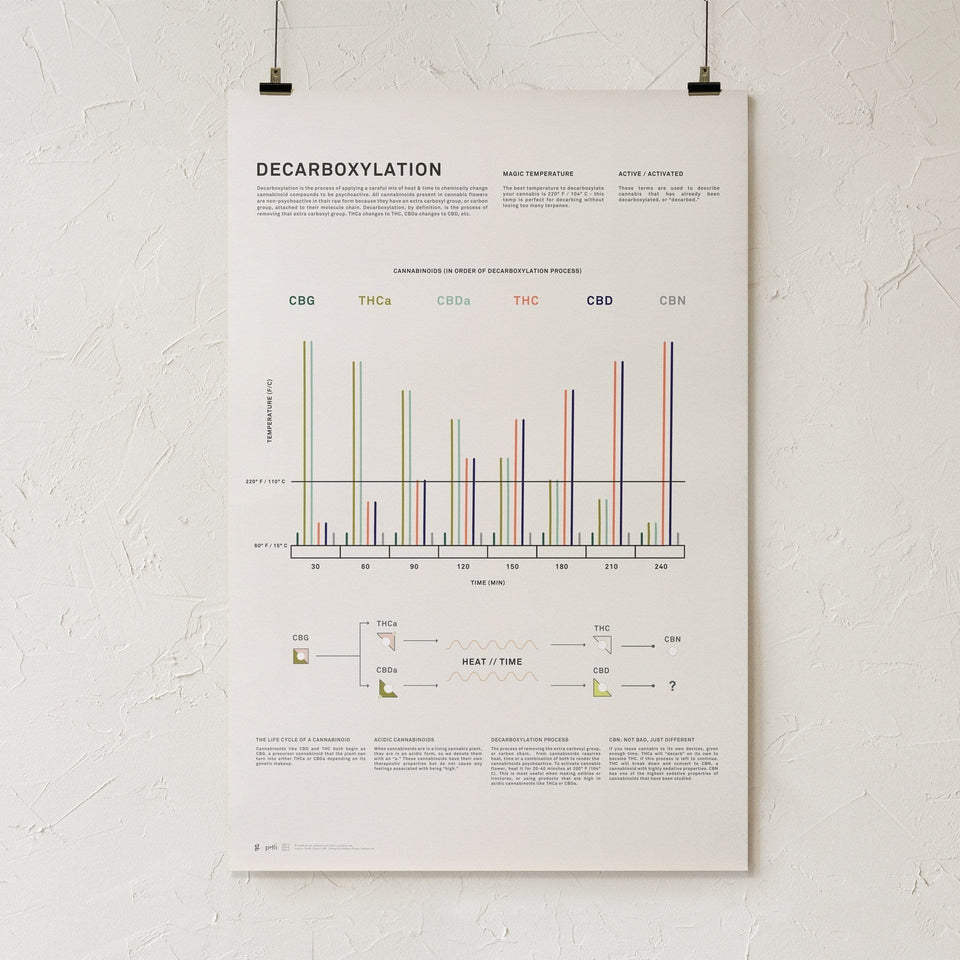 Decarboxylation Infographic Print - Cannabis Education Poster - Modern Marijuana Art - THC Potency Chart - Goldleaf
