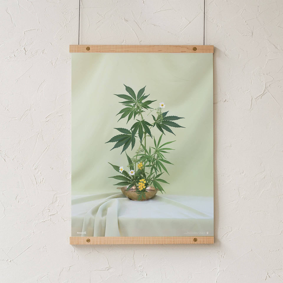 Green Ikebana Print - Cannabis Botanical Floral Arrangement Poster - Marijuana Art - Broccoli Magazine - Goldleaf