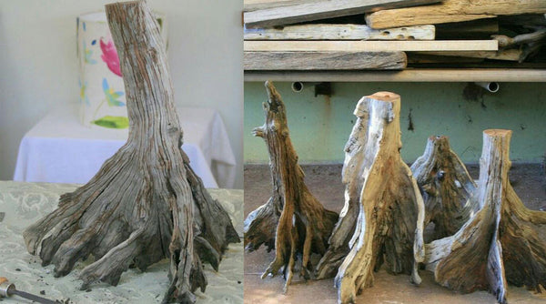 Meet the Maker: Jan Dickers Gives Driftwood New Life as Lamps