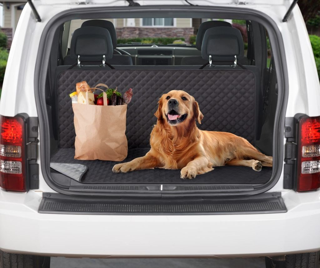 Reversible Dual Purpose Back Seat Cover (2 Colors Available)