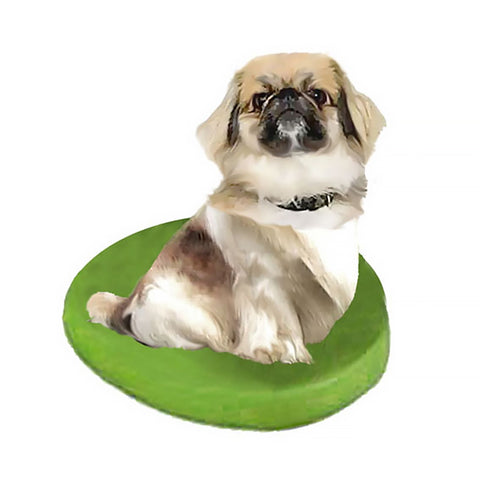 Custom Pet Dog Bobblehead - Pekingese