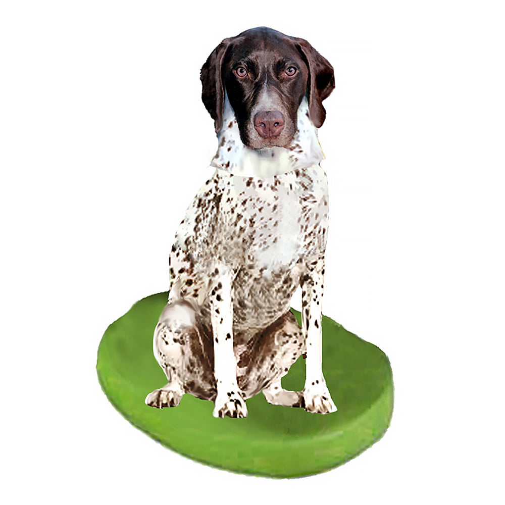 Custom Pet Dog Bobblehead - Pointer