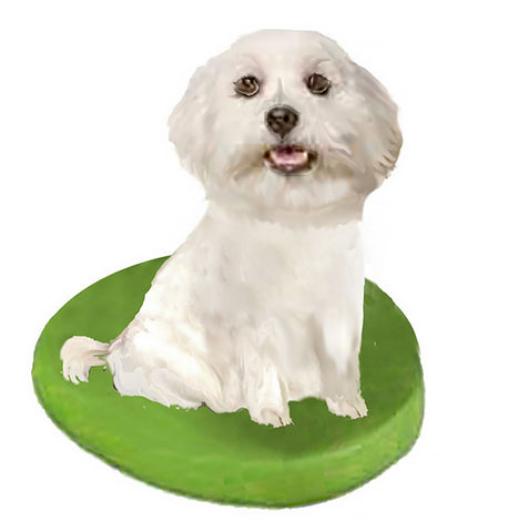 Custom Pet Dog Bobblehead - Maltese