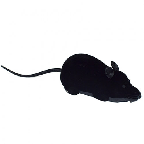 Creative Two-way Remote Mouse Toy BLACK Other RC Toys